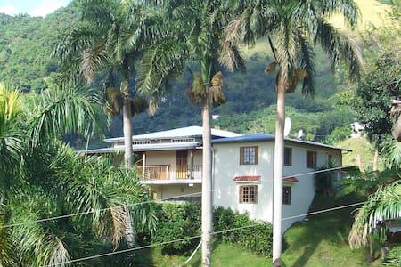 Casa Campo Jayuya, Mountain Retreat - Jayuya
