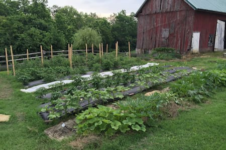 Farm Retreat - 20 mins to downtown Cincinnati - Cincinnati