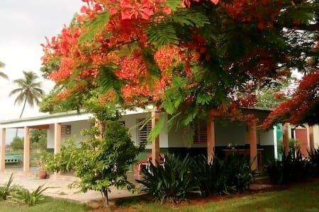 Villa D'Lirios Habitación 1 - Vendégház