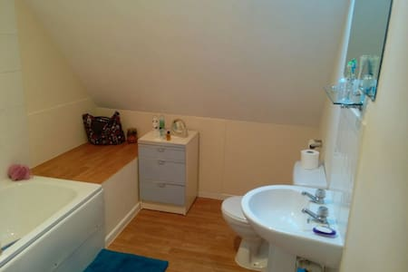 Mid-Wales Town Centre Spacious Room in Quiet Flat. - Apartment