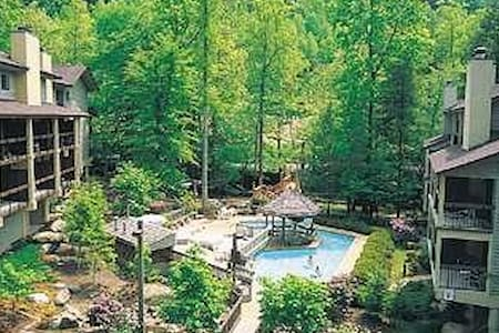 Secluded Gatlinburg Gem - walking distance to city - Gatlinburg - Condominium