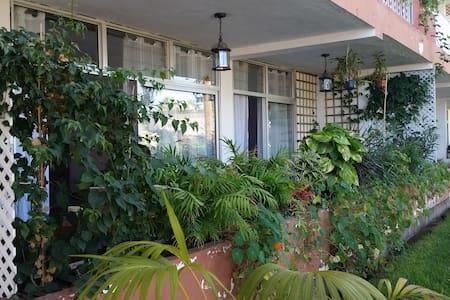 Schöne Wohnung für 4 Personen - Puerto de la Cruz - Wohnung