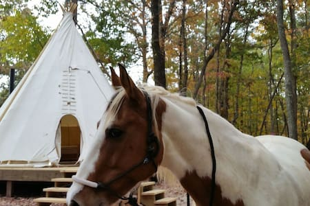 Upscale Camping in Authentic Indian Tipi - Lynchburg - Tipi