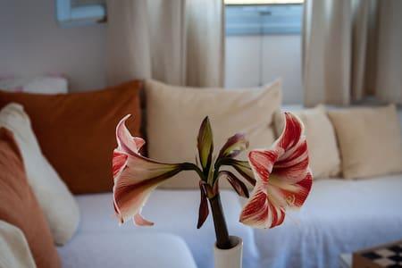 Naxos Family Apartment - Village Glinado