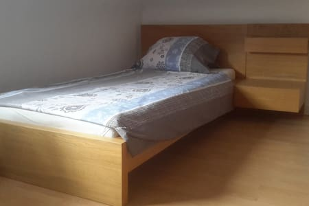 12m clean room, steps from metro, central - Stuttgart - Apartment