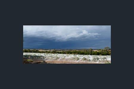 Barossa's beautiful Eden Valley - Mount Pleasant