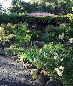 Private Cottage in Garden Paradise - Santa Rosa - House
