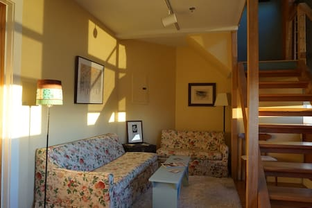 Easthampton Loft Apt/5 Minutes from Northampton - Easthampton - Apartment