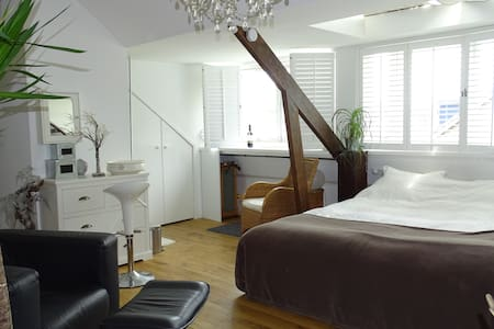 Comfy and cozy room near Rotterdam room 1 - Heenvliet - Talo