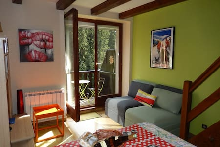Visit Alsace from center position / condo 4 people - Lejlighed