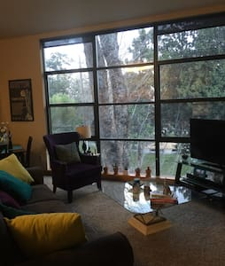 Private room in heart of downtown - Sacramento - Apartment