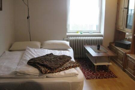 Schönes, helles Apartement 42857 RS - Apartment