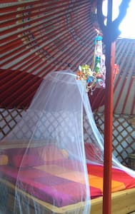 Hebergement atypique en yourte mongole - Yurt