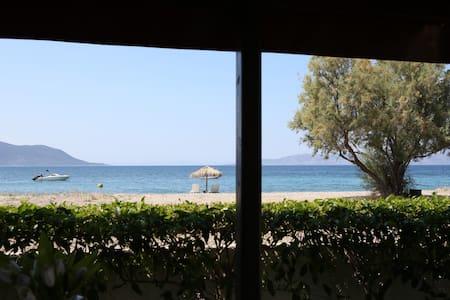 Villa Selina on the Kanatadika beach, Evia - Vila