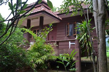 Tree house countryside - Tambon Mae Raem - Bungalov