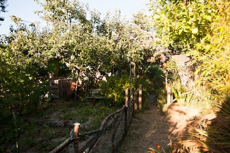 Secluded Eco-Cottage - Arcata - Stuga