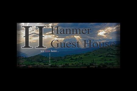 Hanmer Guest House - House