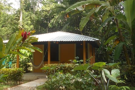 Cabina Mandarina, In the Jungle near the Sea - Cabin