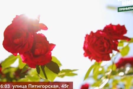 Студия 5 в Гостевом доме на Пятигорской Vero - Sochi - Bed & Breakfast