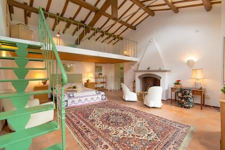 Charming Cottage in Frascati - Grottaferrata - Villa
