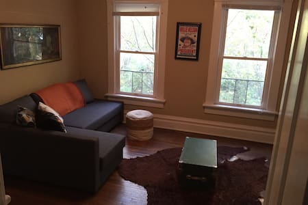 Beautiful Apt. in Olde Towne East - Apartment