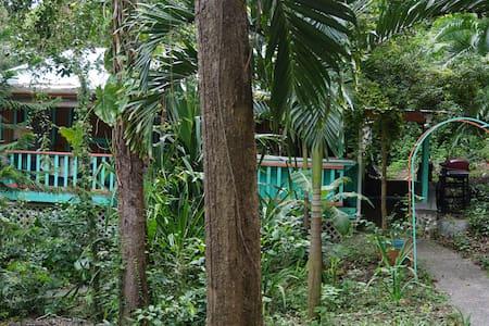 Peaceful Cottage in a beautiful Rainforest - Cabanya