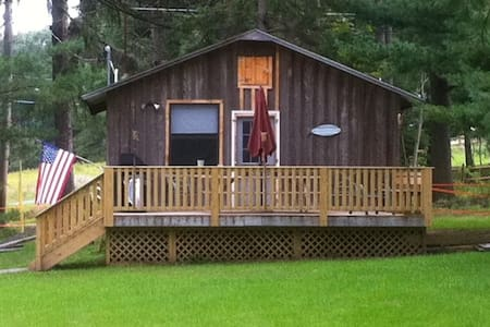 Country Cabin 115 acres  Cabin #1 - Lake Huntington