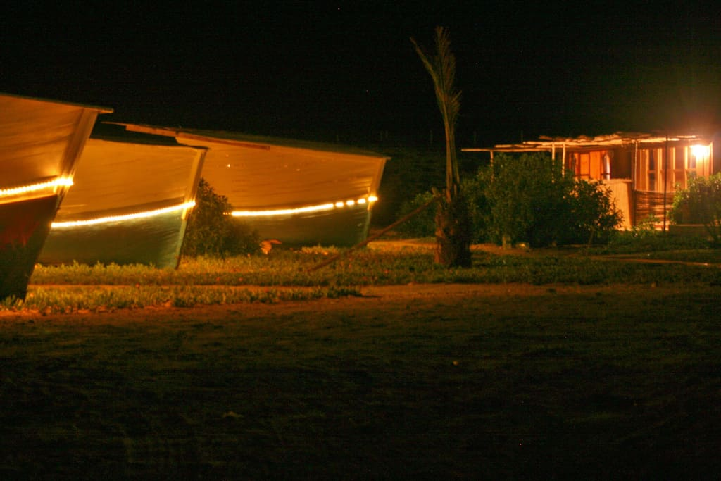 boats, and cabins in the background by night....