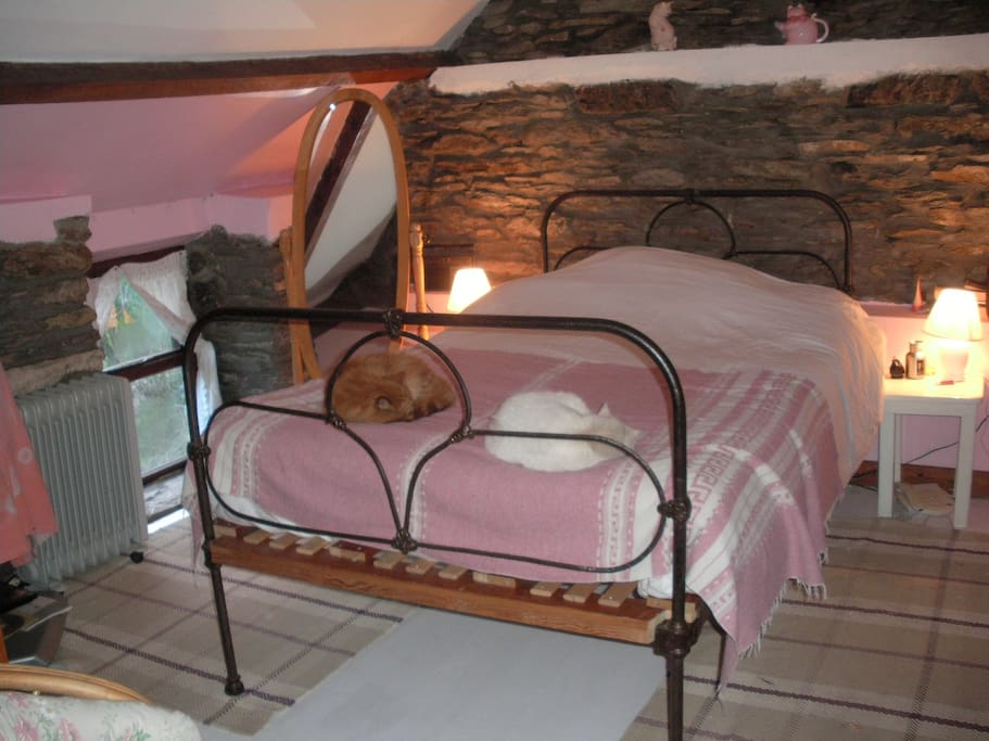 The pink room.  (cats on bed optional!)