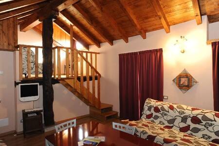 ATTICO ROMANTICO SUL  LAGO D'ORTA - Crabbia - Loft