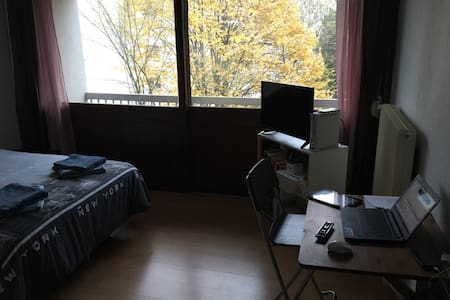 Appartement au calme - Nancy - Flat