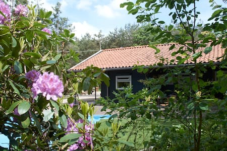 Knus Wild West Huisje  In De Natuur - Bed & Breakfast