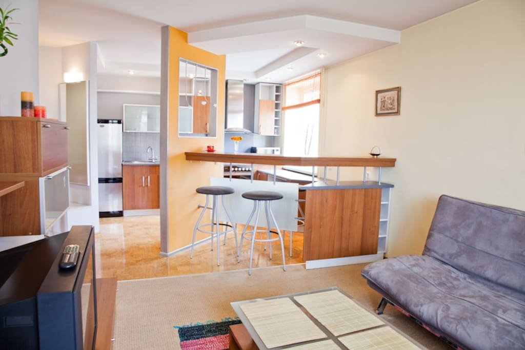 Modern apartment in Zaliakalnis