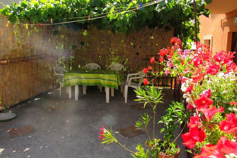 Grape-wine shaded terrace
