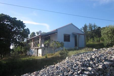 Ferienhaus Skorić-Insel Rivanj  - Haus