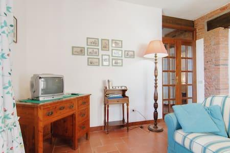 Montelifrè Piscina natura relax OB - Province of Siena - Apartment