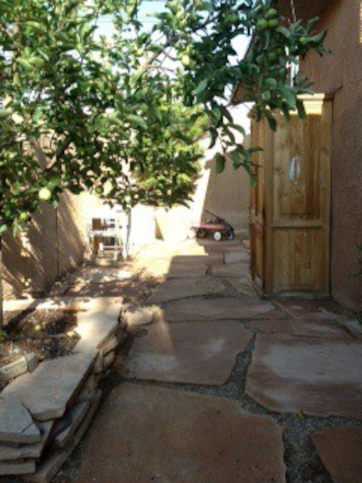 Walking entrance to our Hidden Casita.  Welcome to Albuquerque!  Apples on the apple tree!