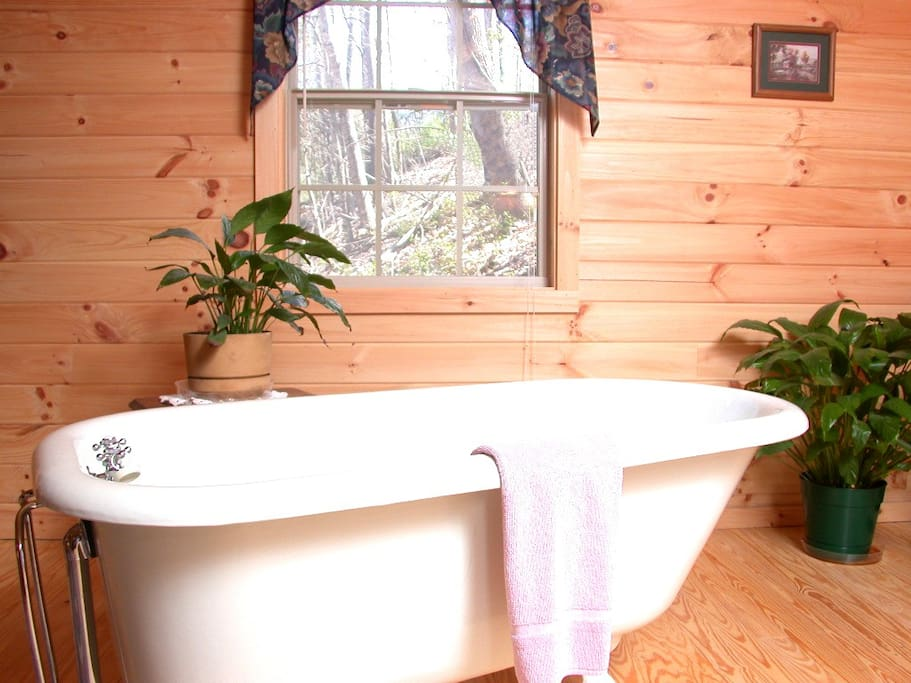 Check out this Claw-foot tub!