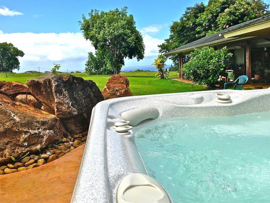 hot springs grandee spa distant ocean views