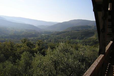 Casa nel bosco - Cabin