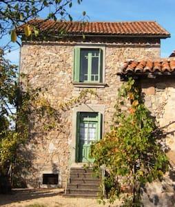 Holiday cottage in north Dordogne - Saint-Estèphe - House