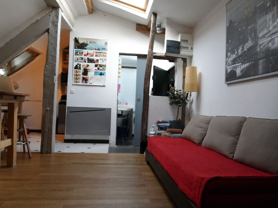 Delightful Petit-Loft, Very Bright, V ROMANTIC/or FAMILIAL w dimming dreamy lighting, bright bathroom, large skylights, BATHTUB & shower, huge make-up friendly mirror, blowdry, WIFI Internet + FREE Telephone !