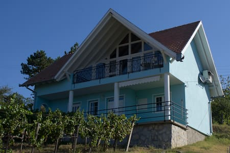 for rent wine house with airco - Monyoród - Hus