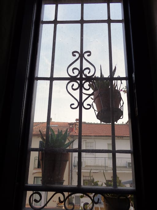 The view from the bathroom, with some aloe plants.
