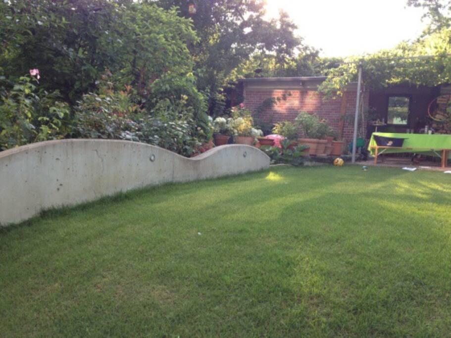 Blick in den Garten von der Terasse