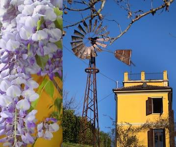 Farmhouse in Alba countryside - Santo Stefano Belbo - Hus