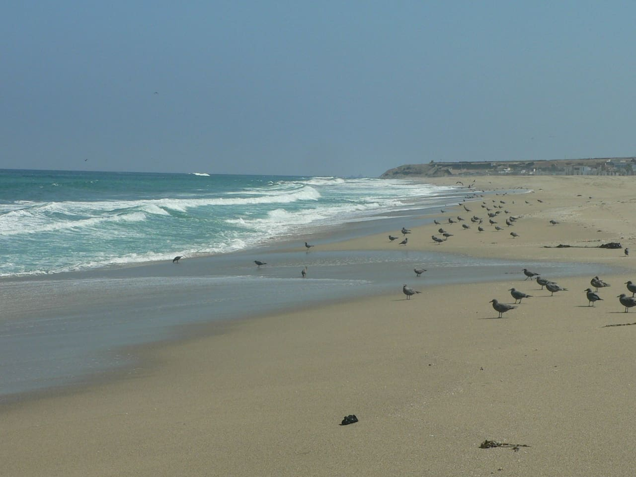 You may take lovely long walks along the oceanside