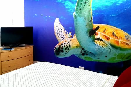 Turtle Suite w/private Bathroom - Apartment