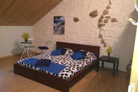 Chambre de 25 m2 dans grande maison - Hus