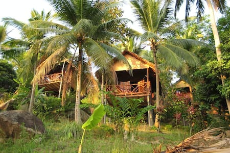 Affordable Bungalow in The Jungle 1